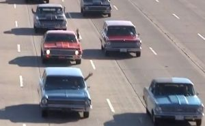 Video: CPP's 4th Annual Nova Cruise Features Wall To Wall Novas