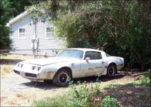 Found In A Field: &#8217;79 Trans Am