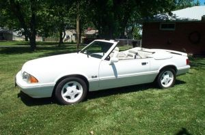 "Mint Condition 1993 ""Feature Edition"" Mustang Up For Grabs"