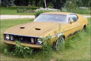 Lawn Ornament: 1973 Mustang Mach 1 Used For Decoration