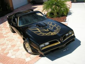 Lindsey Fisher: My Unexpected List of Top 5 Ultimate Muscle Cars