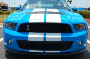 Fork Over a Few Extra Bucks For a 2014 Shelby GT500